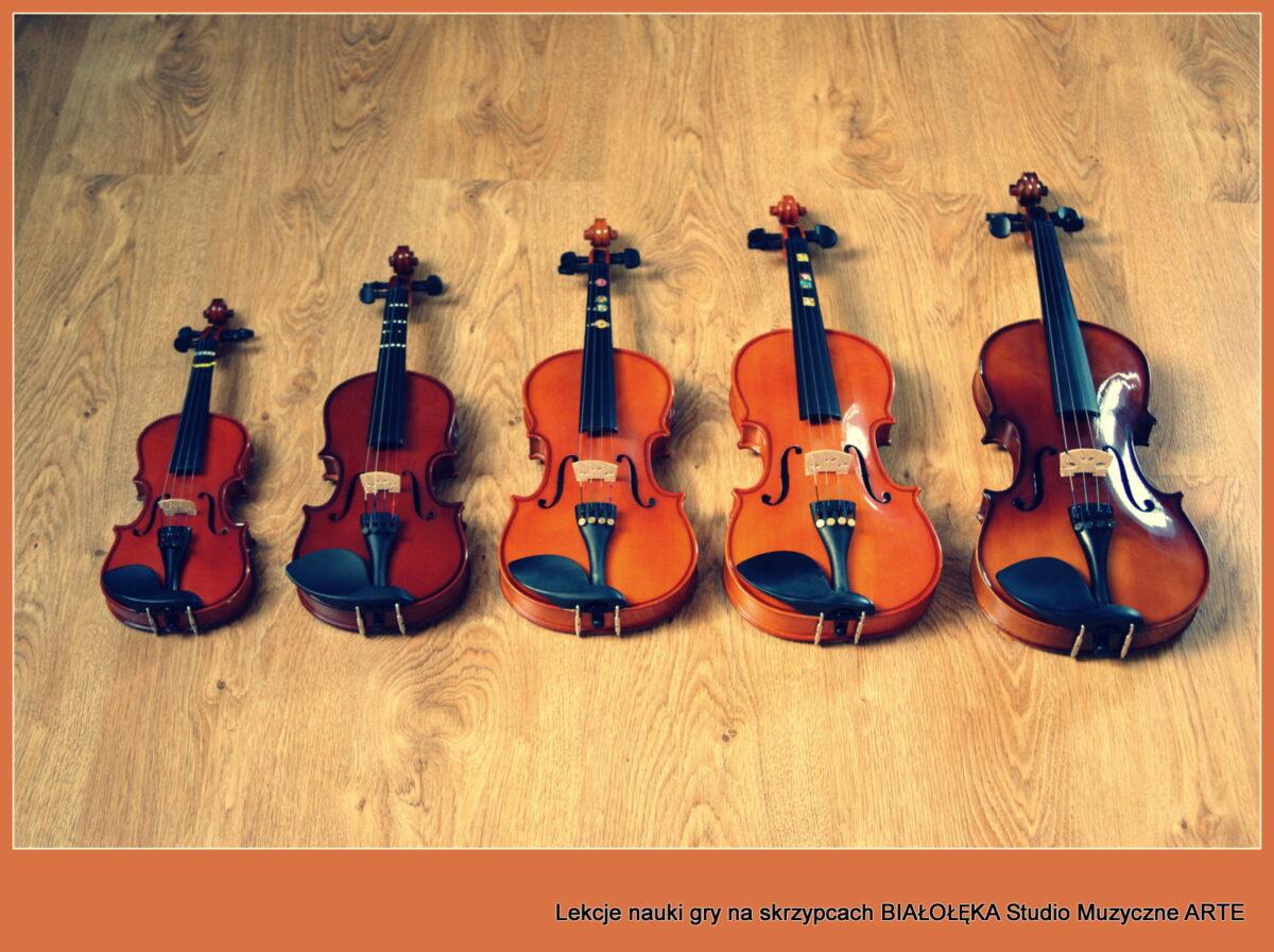 Zapisy na lekcje skrzypiec na II semestr już trwają